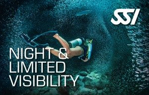 curso de buceo night limited visibility