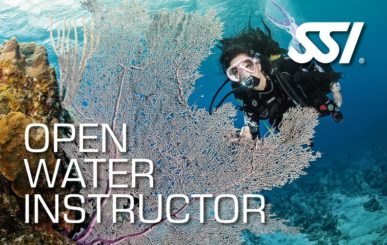 nautilus_open-water-instructor-small